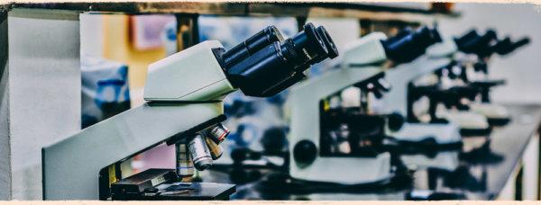 Argument Map - Argumente unter dem Mikroskop