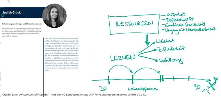 Wissen.schaf[f]t.Bilder Beispielseite der Wissenschaftsbilder